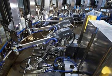 Robotic rotary revolutionises dairy farming