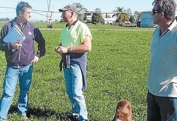 On-farm CFS trials