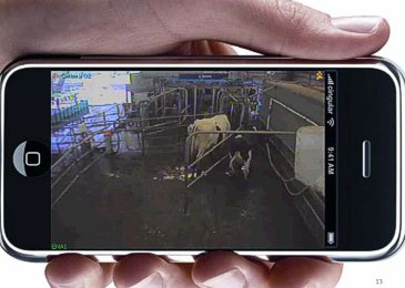 Brave new world of dairy apps