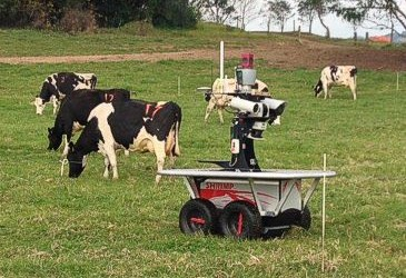 Robots are coming to Kiama