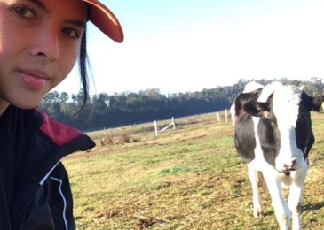 Calling the cows home